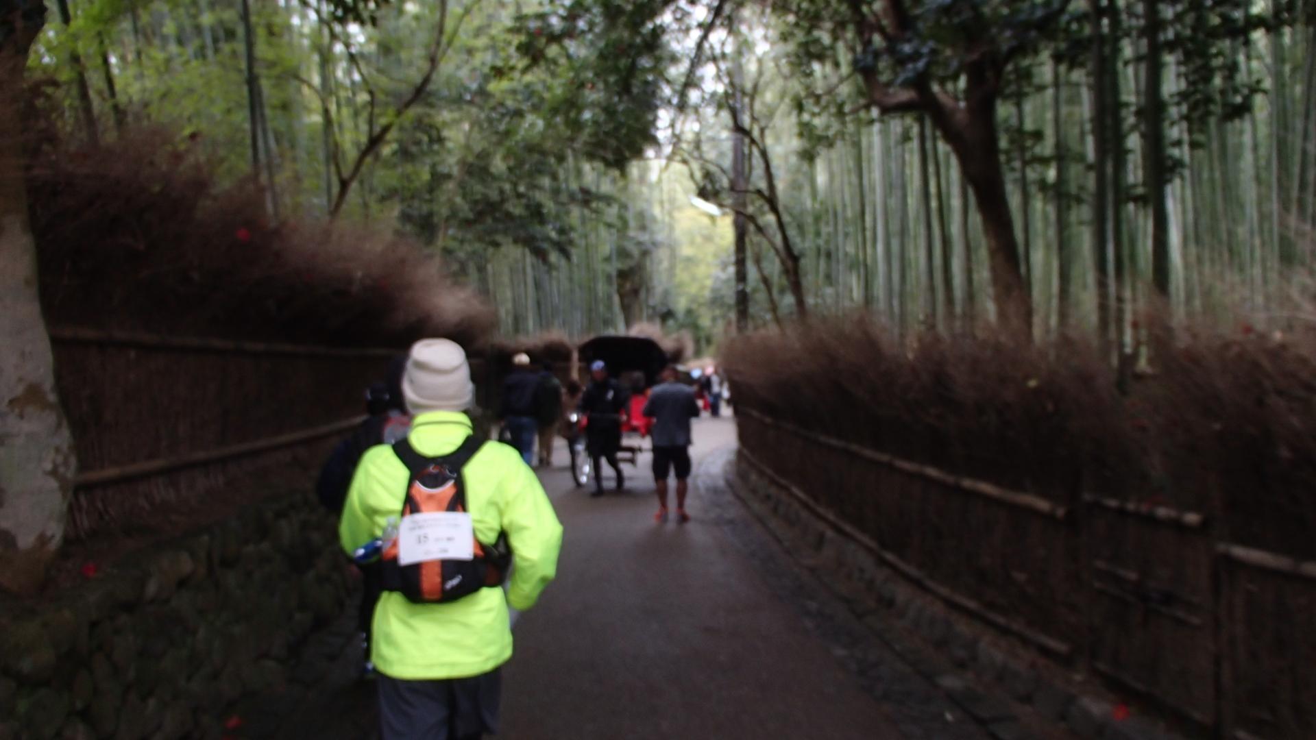 天龍寺横の竹林