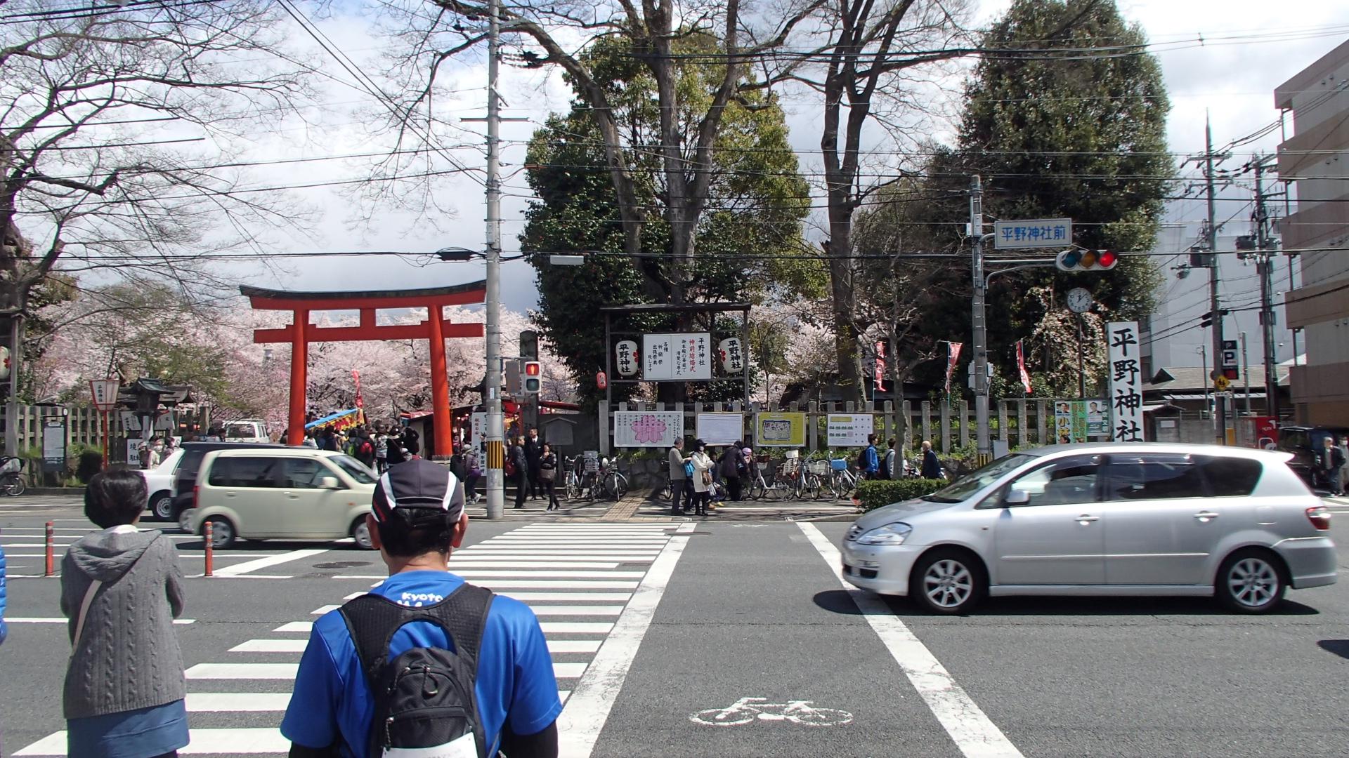 桜の名所平野神社